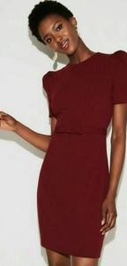 Express puff sleeve belted sheath dress